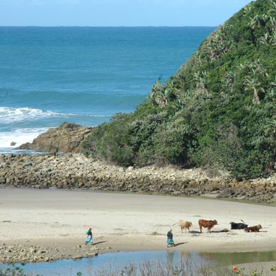 Typical Wild Coast scene on Second Beach, Port St Johns