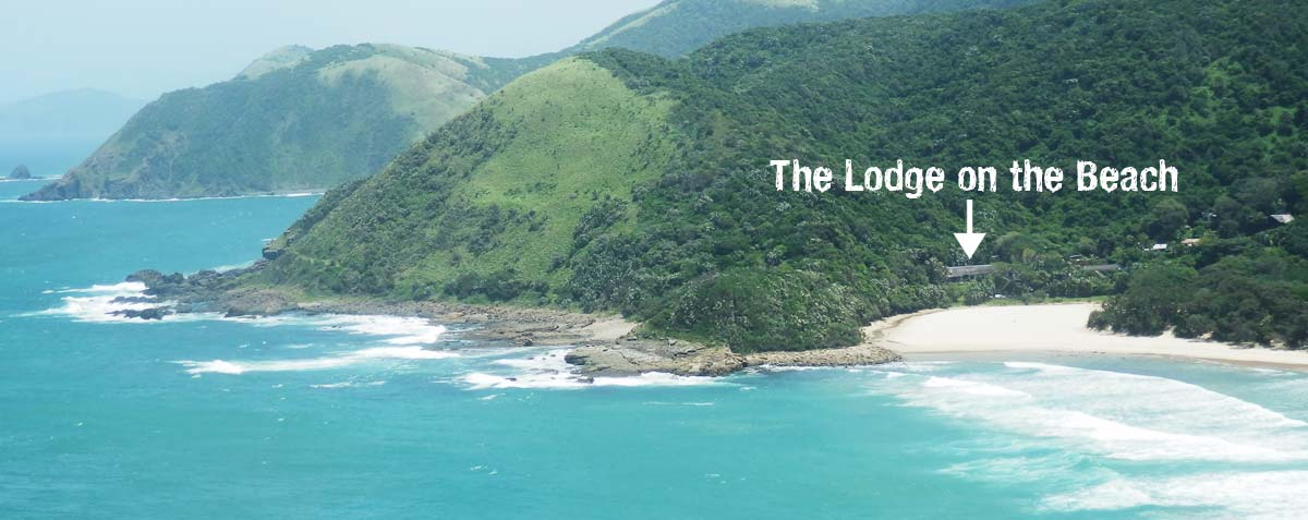 The Wild Coast seen from Second Beach in Port St Johns